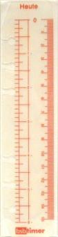 bsb kompakt A6 Lineal Tagesanzeiger für Ringbuch Organiser 6fach Lochung 02-0487