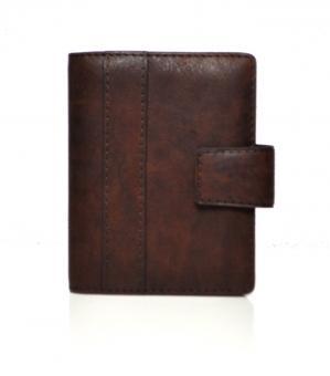 Succes Havana Mini Braun Leder A8 Rinbgbuch 17mm Organiser Zeitplaner PM256HV01