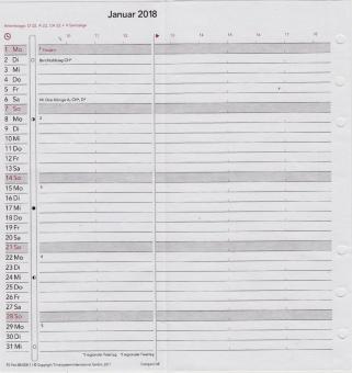 Time/system CMP Compact 2019 Leporello Monatsplaner Deutsch Faltplaner 954308